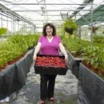 New at Wahaca – British grown Serrano chillies