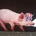 Help! We've lost our pig!