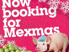Now booking for Mexmas
